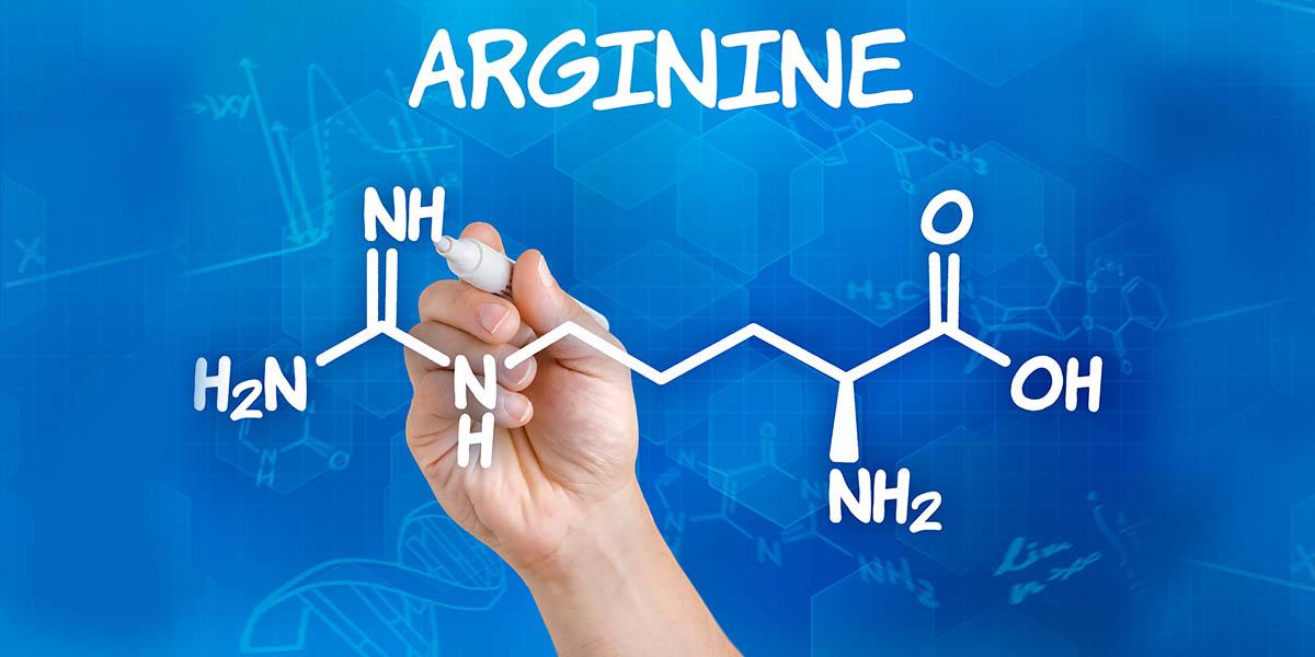 arginin stoffwechsel