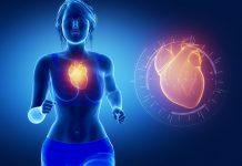 Sport verbessert die Gesundheit der Blutgefäße
