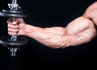 Arnold Schwarzeneggers Armtraining Tipps