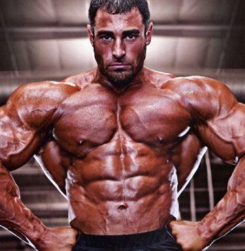 Kreatin Gewichtszunahme Wasser Muskeln