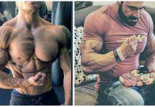 Cortisol Muskelaufbau