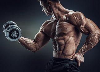 Testosteron leistungssteigernde Substanzen