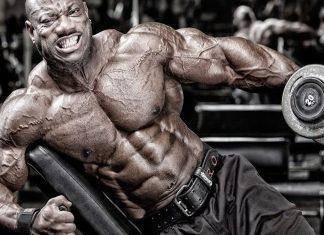 Lyle McDonald Trainingszyklus