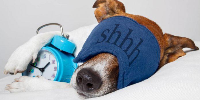 Schlechter Schlaf kann der Gesundheit schaden