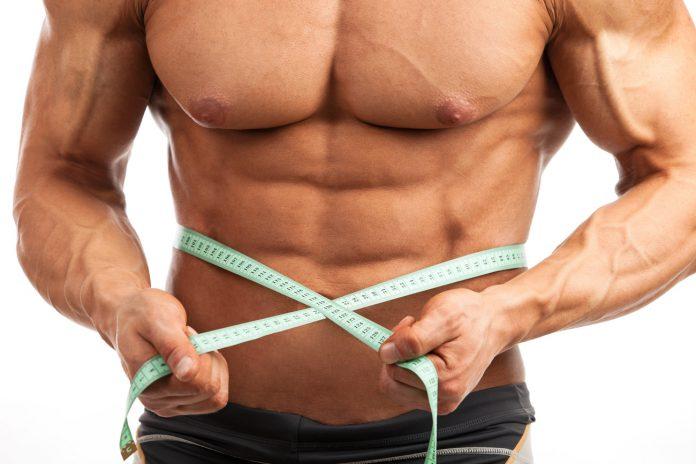 Braunes Fettgewebe zur Bekämpfung von Fettleibigkeit