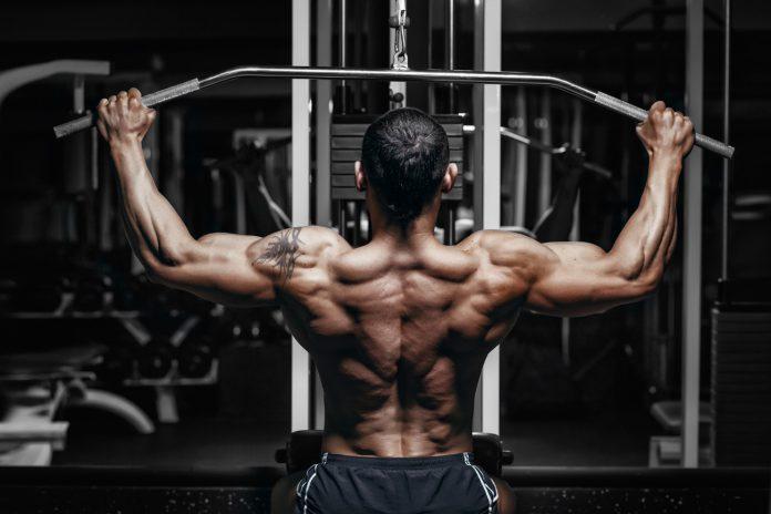 Latziehen zur Brust aktiviert die Oberkörpermuskeln am besten