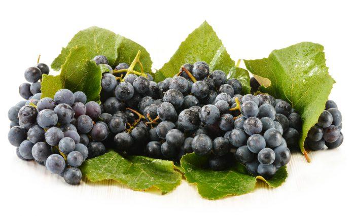 In Rotwein enthaltenes Resveratrol verbessert die Ausdauer
