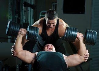 Exzentrische Kontraktionen sind für Muskelhypertrophie am besten