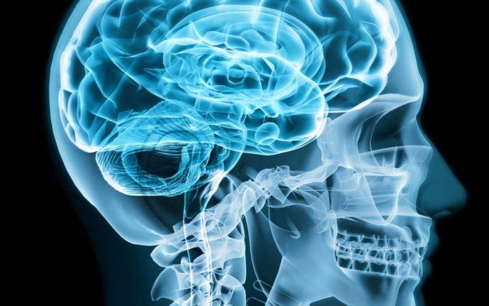 Ketose Kohlenhydrate Gehirnfunktion