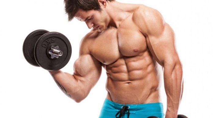 Muskeln aufbauen realistisch pro Monat