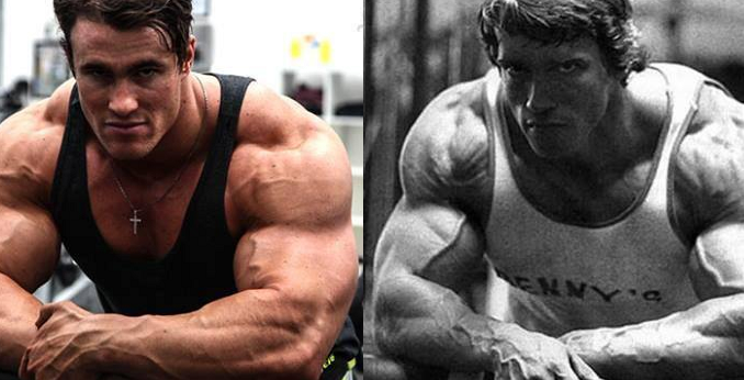 arnold schwarzenegger schwarzenegger terminator arnie trump arnold - Arnold Schwarzenegger Lebenslauf