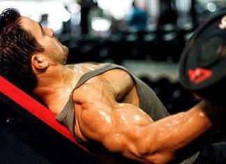 Übungsreihenfolge Muskelaufbau